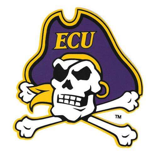 Full Color Jolly Roger Logo Decal