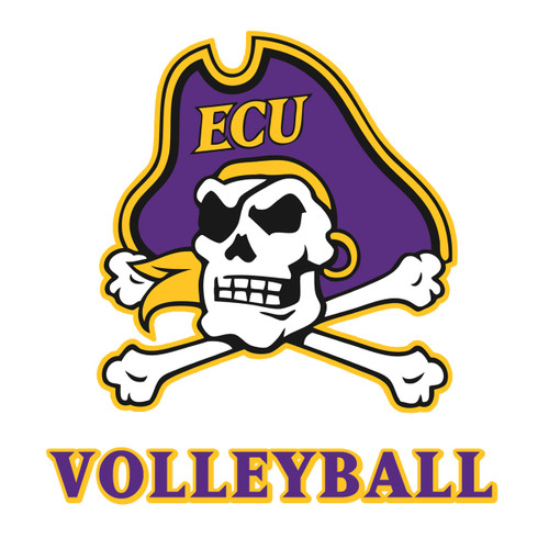 Jolly Roger Volleyball Decal