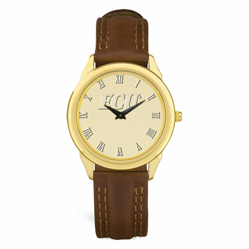 Gold ION & Brown Leather ECU Roman Men's Wristwatch
