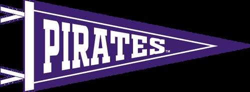 """6"""" x 15"""" Purple Pirates Pennant"""