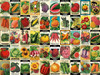 Heirloom Seeds - 750pc Jigsaw Puzzle By Re-marks