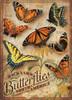 Backyard Butterflies - 500pc Jigsaw Puzzle By Cobble Hill