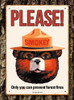 Smokey Bear - 500pc Jigsaw Puzzle by Aquarius