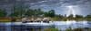 Herd of Elephants - 2000pc Panoramic Jigsaw Puzzle By Heye