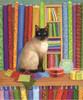 Quilt Shop Cat - 1000pc Jigsaw Puzzle By Sunsout