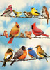 Blue Sky Birds - 35pc Tray Puzzle by Cobble Hill