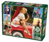 Roadside Attractions - 1000pc Jigsaw Puzzle By Cobble Hill