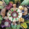 Mushrooms: Discovery Park - 750pc Jigsaw Puzzle by Ceaco