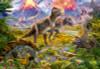 Educa Jigsaw Puzzles - Dinosaur Gathering