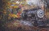 Train's Coming - 1000pc Jigsaw Puzzle By Sunsout