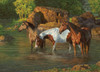Horse Pond - 500pc Jigsaw Puzzle By Cobble Hill