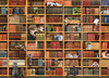 The Cat Library - 1000pc Jigsaw Puzzle By Cobble Hill