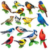 Songbirds II - 500pc Multipack Shaped Mini Jigsaw Puzzle by Lafayette Puzzle Factory