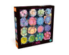 Sweet Succulents - 300pc Large Format Jigsaw Puzzle by Buffalo Games