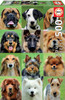 Dogs Collage - 500pc Jigsaw Puzzle by Educa
