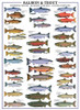 Eurographics Jigsaw Puzzles - Salmon & Trout