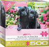 Black Labs in Pink Box - 500pc Oversized Piece Jigsaw Puzzle by Eurographics
