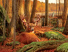 Where Sleeping Deer Lie - 500pc Jigsaw Puzzle By Sunsout