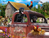 Big Dog in Charge - 1000+pc Large Format Jigsaw Puzzle By Sunsout