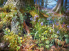 From Rusland Woods - 2000pc Jigsaw Puzzle By Castorland