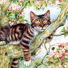 Sleepy Cat - 500pc Jigsaw Puzzle By Sunsout