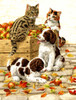 Box of Apples - 500pc Jigsaw Puzzle By Sunsout