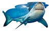 I AM LIL SHARK - 100pc Shaped Jigsaw Puzzle by Madd Capp
