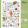 Shells of Sanibel & Captiva  - 550pc Jigsaw Puzzle by Heritage Puzzle