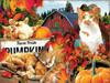 Farm Fresh Pumpkins - 300pc Large Format Jigsaw Puzzle By Sunsout