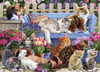 A Cat's Life - 1000pc Jigsaw Puzzle by Vermont Christmas Company