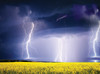 Field of Lightning - 1000pc Jigsaw Puzzle By Serious Puzzles
