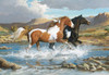 Stream Canter - 1000pc Jigsaw Puzzle by Lang