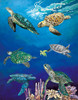Majestic Sea Turtles - 550pc Jigsaw Puzzle by Heritage Puzzle