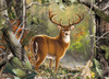 Realtree: Backcountry Buck - 1000pc Jigsaw Puzzle by Masterpieces