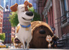 Secret Life of Pets - 100pc Jigsaw Puzzle By Ravensburger (discon-21678)