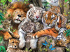 Ravensburger Jigsaw Puzzles - Big Cat Nap