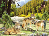 Wolf Creek - 1000pc Jigsaw Puzzle by SunsOut (discon-20800)