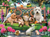 Pets in the Park - 500pc Jigsaw Puzzle by SunsOut