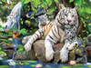 White Tigers of Bengal - 300pc Large Format Jigsaw Puzzle by SunsOut