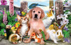 Jigsaw Puzzles for Kids - Good Companions