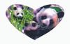Shaped Panda Puzzle