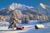 Tomax Jigsaw Puzzles - Snowy Season