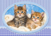 Kittens Curling up on a Blanket - 120pc Jigsaw Puzzle By Castorland (discon-24179)
