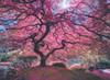 Pink Tree - 1000pc Jigsaw Puzzle by Anatolian
