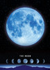 The Moon - 500pc Glow in the Dark Jigsaw Puzzle By Tomax