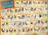 State Birds - 1000pc Jigsaw Puzzle by Eurographics