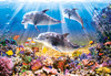 Jigsaw Puzzles - Dolphins Underwater