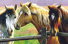 Horse Fence - 1000pc Jigsaw Puzzle By Sunsout