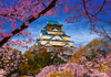 The Harmony of Spring - 500pc Jigsaw Puzzle By Castorland