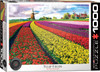 Tulip Field, Netherlands - 1000pc Jigsaw Puzzle by Eurographics